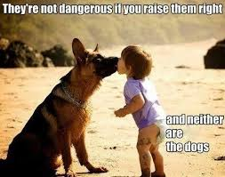 They're not dangerous if you raise them right. Meme by The German ... via Relatably.com