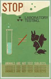 best ideas about stop animal cruelty animal stop animal cruelty and laboratory testing on animals