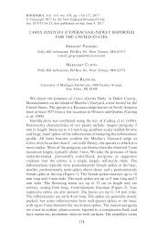 (PDF) Carex disticha (Cyperaceae) Newly Reported For the United ...