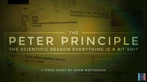 video essays latest video essay the peter principle the reason things always go wrong
