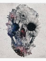 <b>Floral Skull</b> Wall Art | Redbubble