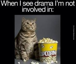 Animal memes - When I see drama I'm not involved in | FunnyMeme.com via Relatably.com