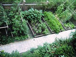 Image result for small area gardening