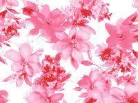 29 <b>Floral Print</b> | <b>Pink</b> ideas | <b>floral</b>, <b>floral</b> prints, <b>pattern</b> wallpaper