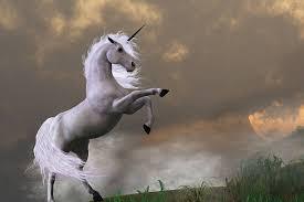 neoback rainbow unicorn photography backdrop