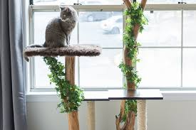 Cat Lovers! Learn How to Make a DIY <b>Cat Tree</b> Using Real Branches