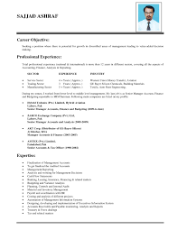 career objective on resume template career objective on resume
