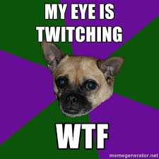 my eye is twitching wtf - WTF dog | Meme Generator via Relatably.com