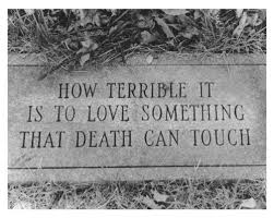Image result for looking for life in the cemeteries