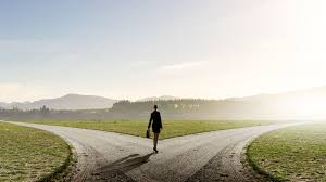 four steps to a cover letter for career transition success back view of businessw standing on crossroads and making choice