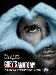 Greys Anatomy Temporada 8