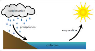 the techie teacher  water cycle thinglink