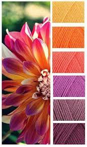kitchen colors images: warm color inspiration  warm color inspiration