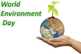 world environment day seven billion dreams one planet consume  world environment day seven billion dreams one planet consume with care