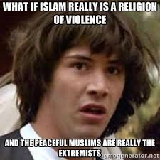 What if Islam really is a religion of violence and the peaceful ... via Relatably.com