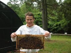 Renting hives for crop pollination has become a big business  Pinterest