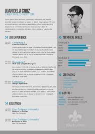 thetotoboxcomblogwp contentuploads201401res modern professional resume templates