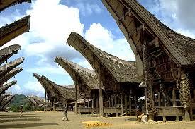 Hasil gambar untuk rumah adat toraja