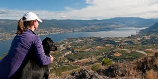 Image result for images of spring in Summerland, bC
