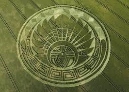 Imagini pentru cercuri in lan