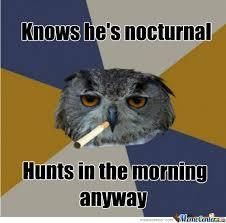 Nocturnal by online_addict07 - Meme Center via Relatably.com