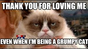 thank you for loving me even when i'm being a grumpy cat - Grumpy ... via Relatably.com