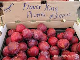 PLUOT Flavor King