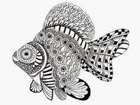 Красочные рыбы: лучшие изображения (68) в 2018 г ...