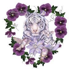 tigers in flower heart