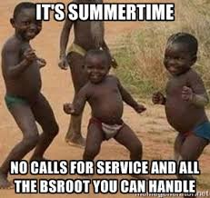 It's Summertime No calls for service and all the BSROOT you can ... via Relatably.com