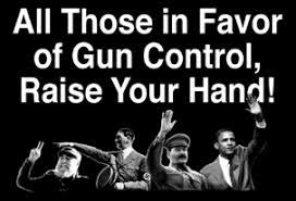 Image result for obama 2nd amendment