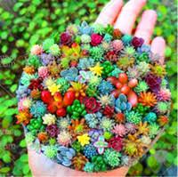 Stone Pots Online Shopping | Stone Flower Pots for Sale