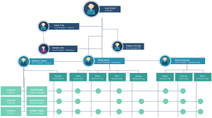 organizational chart templates for any organizationorganizational chart template of matrix structure