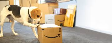 <b>New</b> Requirements for Amazon Frustration-<b>Free</b> Packaging in <b>2019</b> ...