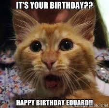 Happy Birthday Cat Meme Generator - happy birthday cat meme ... via Relatably.com