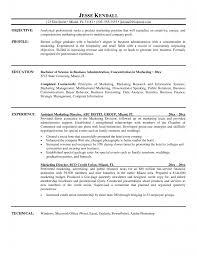 marketing resume samples director of marketing resume ceo resum successful marketing director resumes successful marketing director resumes