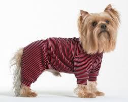 """<b>Комбинезон для собак Yoriki</b> """"Тигровый"""", унисекс, цвет: красный ..."""