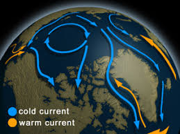 5 causes of ocean current