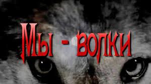 Вячеслав МЕДЯНИК. <b>Мы</b> - <b>волки</b> / N-stудия - YouTube