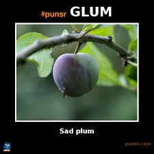 punsr GLUM meme | Punsr.com | There is a joke in every word. The ... via Relatably.com