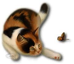 """Résultat de recherche d'images pour """"gifs chats animés"""""""
