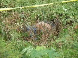 Resultado de imagen para Encuentran cadáver de comerciante en unos matorrales en San José de las Matas