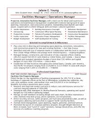 information technology resume samples cipanewsletter information technology manager resume sample it project operations
