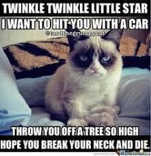 Memes Vault Best Cat Memes Ever via Relatably.com