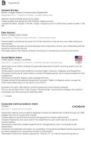 Higher Education Resume Samples  education sample resume sample