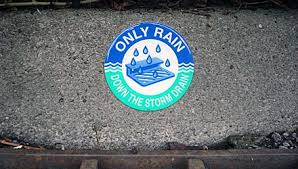 Image result for only rain down the drain