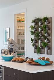 Kitchen Herb Garden Design When Putting Herb Into The Indoor Garden Patio Decor Best Patio