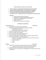 professional summary examples on resume resume builder professional summary examples on resume resume examples by professional resume writers pet sitting resume sample babysitting
