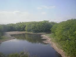 Luján River