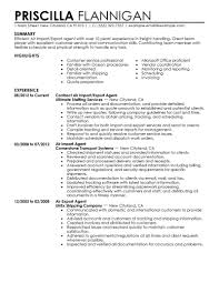 government military resume examples government military air import export agent resume example